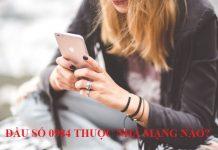 tim-hieu-0984-la-mang-gi-co-nen-su-dung-dau-0984-1